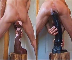 Stallion Penis and Fucking Big Horse Cocks Anal Extreme